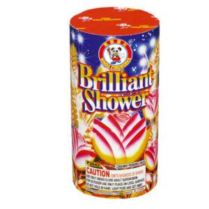 Brilliant Shower P3044